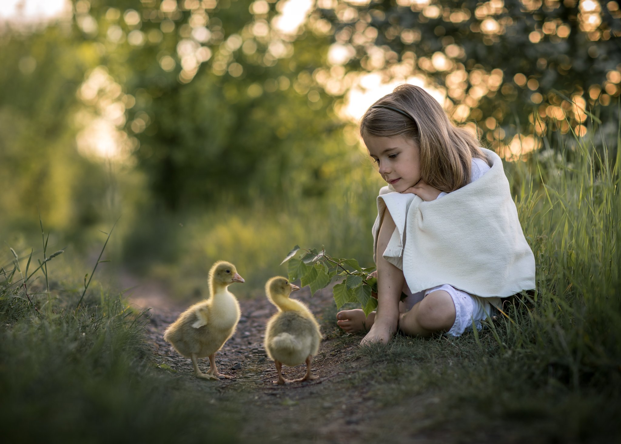 gooseherd goose little girl child cute bokeh dranikowski path magic childhood, Radoslaw Dranikowski