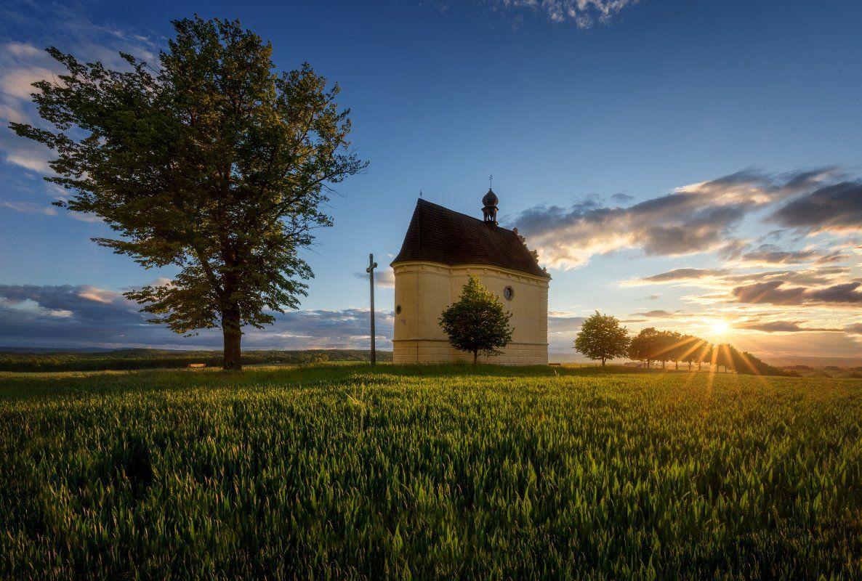 landscape, tree, sunset, panorama, Petr Fiala
