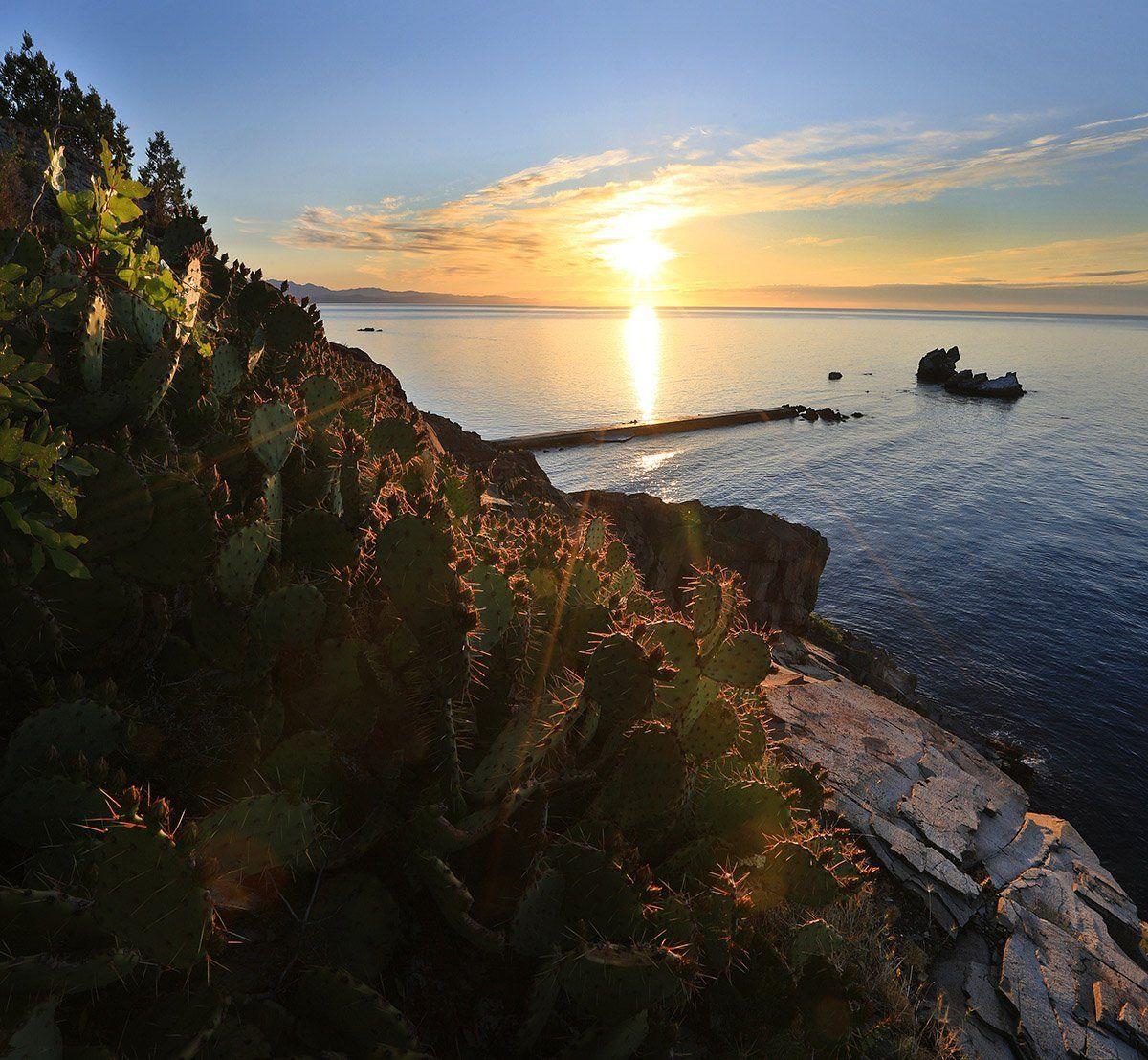 крым, алушта, утес, утес карасан, мыс плака, мыс, кактус, черное море, волна, пляж, пейзажи крыма, Titov Serge
