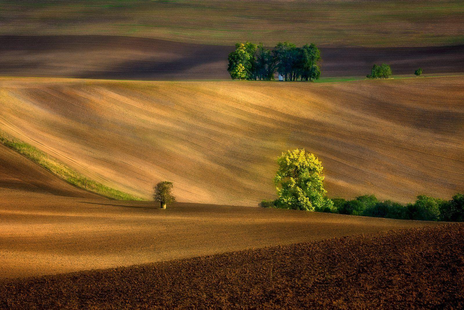 autumn,   landscape, Jan Siemiński