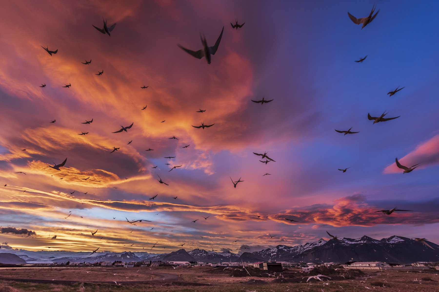 Iceland , Jacek
