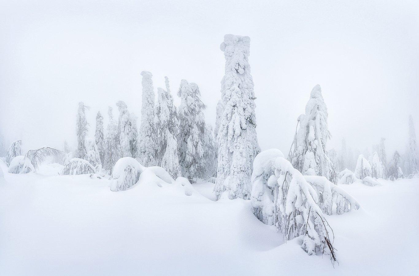 пермский край, снег, зима, туман, Устюжанин Михаил