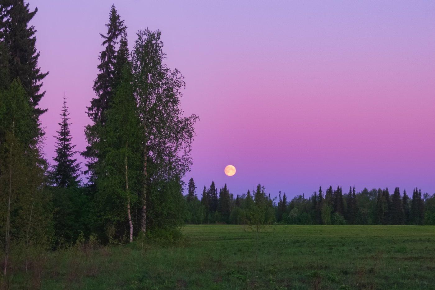 печора,ночь,луна, Игорь Подобаев