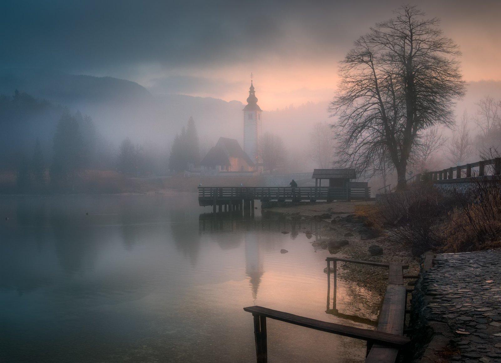 утро, туман, озеро, деревья, словения, Cтанислав Малых