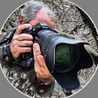 Portrait of a photographer (avatar) Sergey Migunov