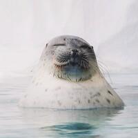 Portrait of a photographer (avatar) Антон Роук (Anton Rouk)