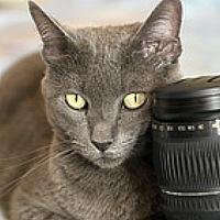 Portrait of a photographer (avatar) Sergey Drobkov